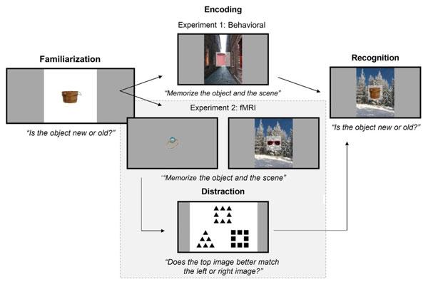 Bài test các hình ảnh trên phông nền trong nghiên cứu
